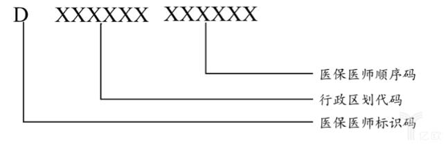 医保医师编码结构