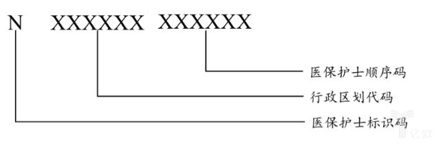 医保护士编码结构